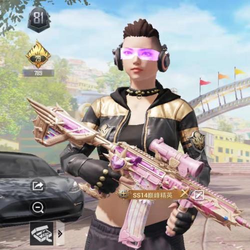 K27 安卓微信 124套装 152枪皮 5粉装 炫紫旋律7级 心之恋语5级 龙虾霸霸6级 特斯拉model3冷光银 4.98w热力
