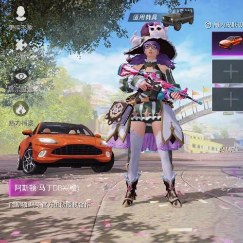 YD-185苹果QQ套装:68枪皮:53 2车1粉状没特效 载具:吉普阿斯顿.马丁《橙》玛莎拉蒂《粉》粉状:精灵迷巫